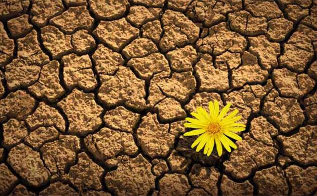 Robusto-o-antifragile-perchè-conviene-essere-resilienti